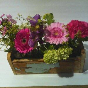 Klaas Droog Bloem & Plant image 1