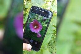 KidzPix – workshop fotograferen met mobiele telefoon voor kinderen