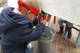 Activiteiten in herfstvakantie bij Hertenkamp Enkhuizen