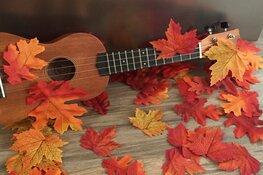 Muziek op schoot voor peuters en kleuters