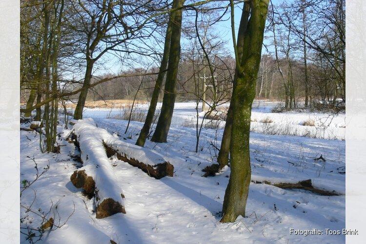 Winterpret met sneeuwvlokken