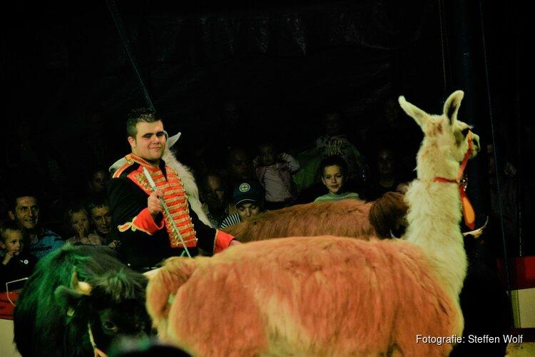 Droom weg bij de tijdloze familieshow van het Internationale Circus Bossle!