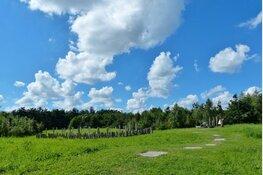 IVN West-Friesland organiseert bronstijdwandeling in het Streekbos