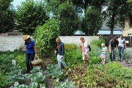 September oogstmaand in het Zuiderzeemuseum