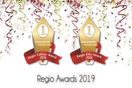 Het Zuiderzeemuseum tweede bij Regio Cultuur Awards 2019