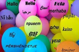 Succesvol initiatief helpt taalbarrières doorbreken in Enkhuizen