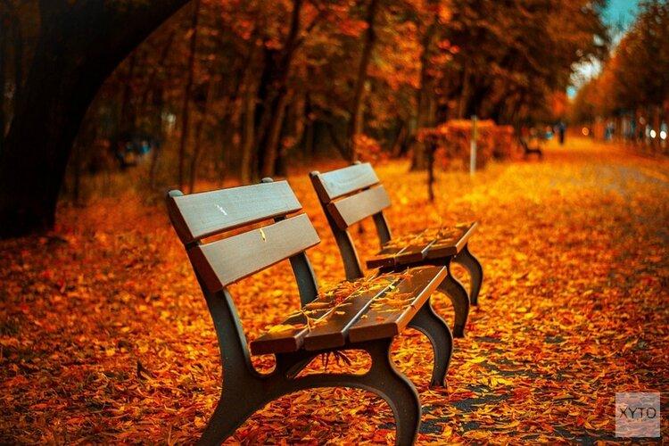 Voor meteorologen is de herfst begonnen