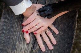Je hond op je bruiloft?