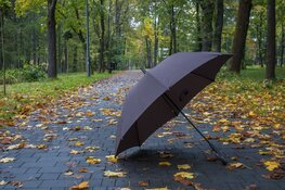 Code geel vanwege zware windstoten: maximumsnelheid Markerwaarddijk beperkt