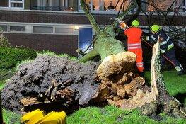 Brandweer handen vol aan Ciara, veruit meeste stormmeldingen in Amsterdam